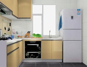 选择困难症 冰箱是放厨房还是放客厅好?